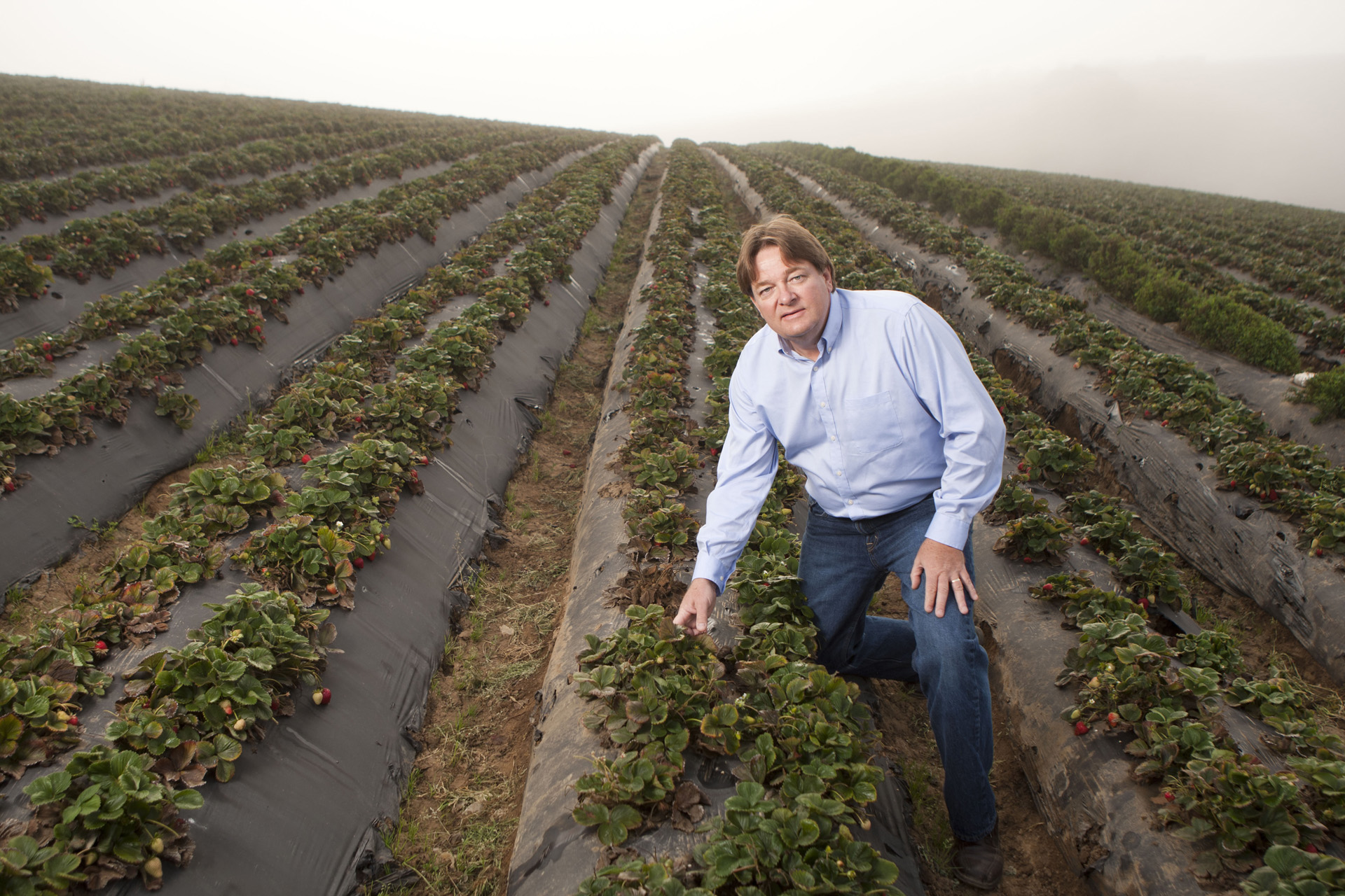 Mike Sharp, General Manager of Pacific Gold Farms