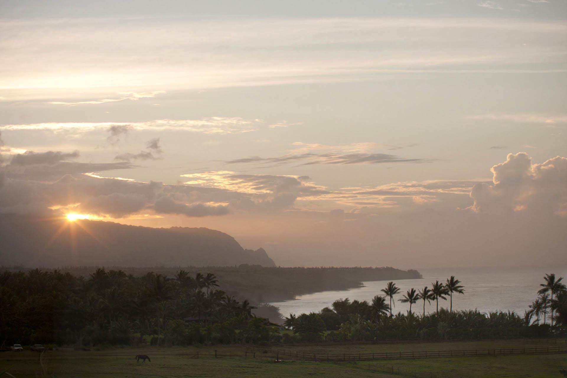 HawaiiWEBOct2014_001