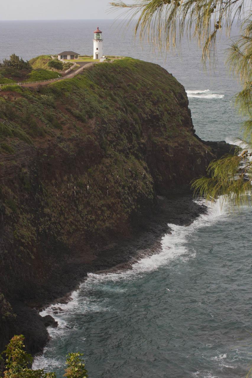 HawaiiWEBOct2014_009