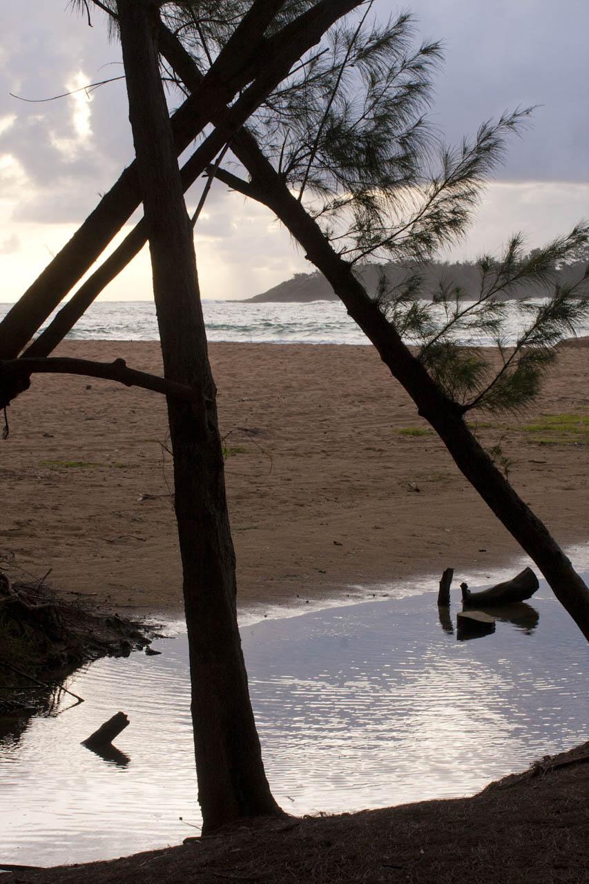 HawaiiWEBOct2014_010