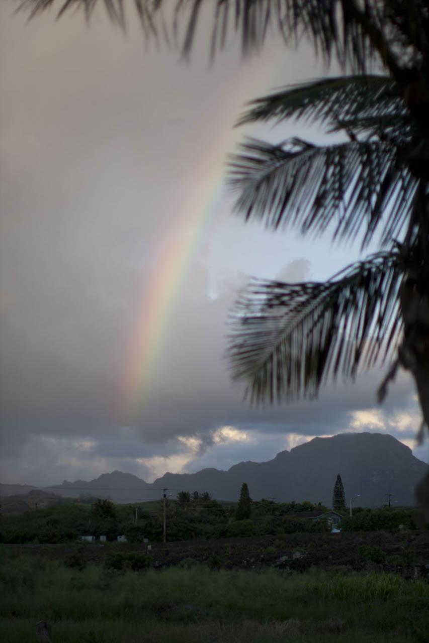 HawaiiWEBOct2014_015