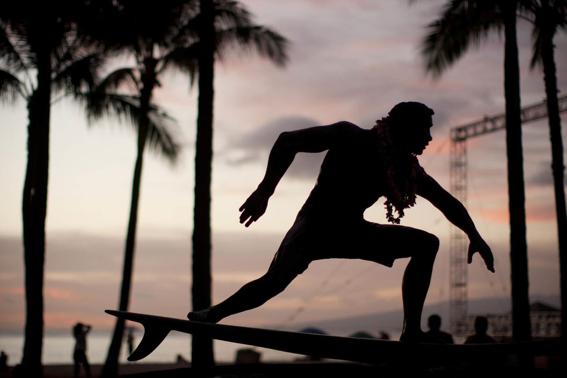 HawaiiWEBOct2014_028